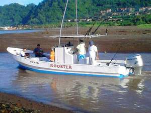 Costa Rica Sport Fishing Charters
